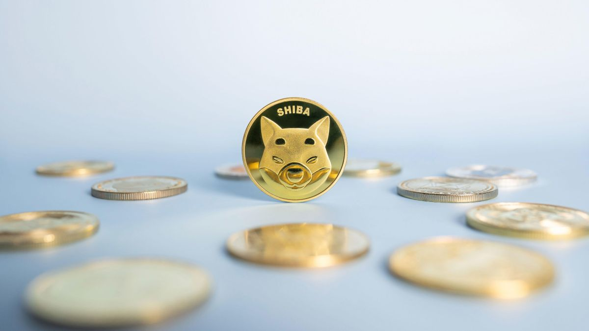 Crypto: Shiba Inu Coin Storms Up To The 11th Biggest Crypto Currency In The World
